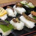<!–:es–>Sushi de insectos<!–:–><!–:en–>Bugs sushi<!–:–>