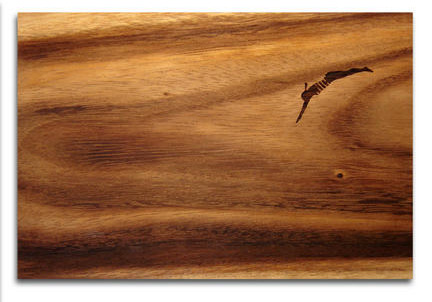 tabla-cortar-banista