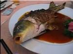 carpa-viva-frita