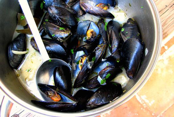 mejillones marineros belga